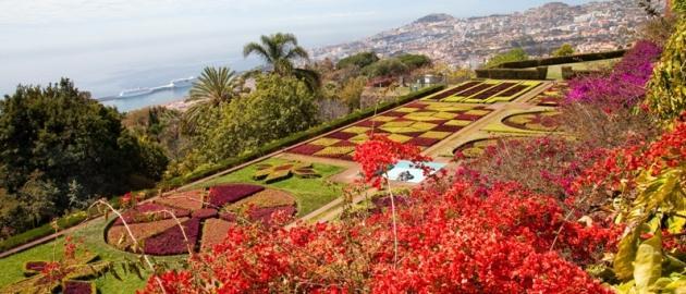 Portugalska-Madeira-Botanični vrt