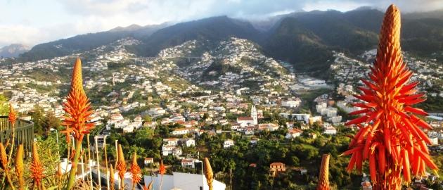 Madeira-Mesto in rože
