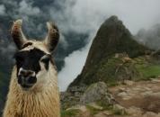 Peru-Machu Pichu