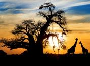 Zahodna Afrika-Sončni zahod