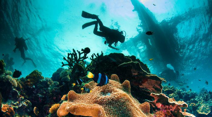 Filipini-koralni greben