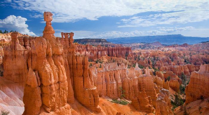 Grand Canyon - Kopija