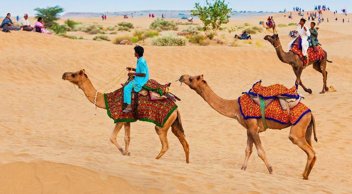 Indija-puscava-Thar