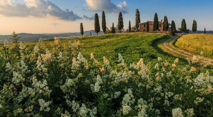 italija_toscana1