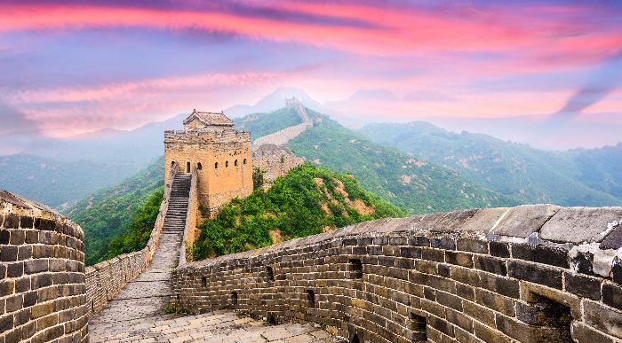 Kitajski zid- vijola