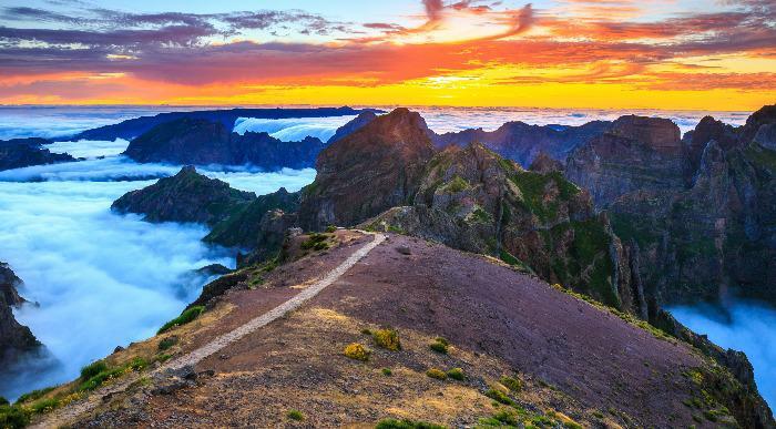 Madeira-atraktivna