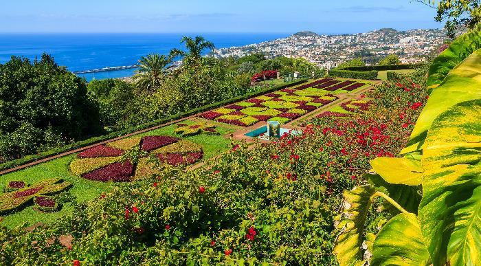 Madeira-botanicni vrt_152264465