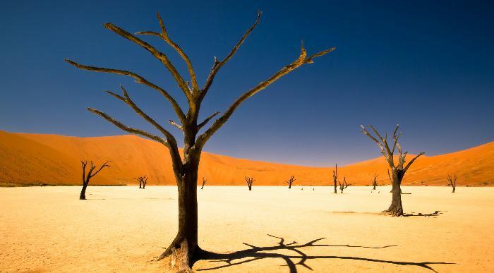Namibija-puscava_256913848