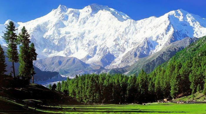Pakistan - Nanga Parbat (2)