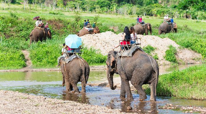 Tajska-chiang-mai_285695534