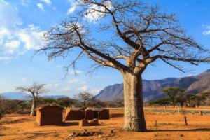 Tanzanija –preprosta vasica