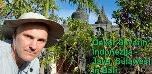 Oskar Savarin - Indonezija