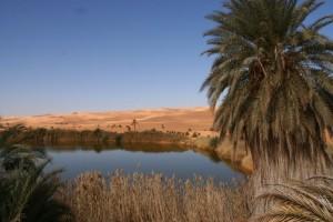 Puščavska Libijska pravljica