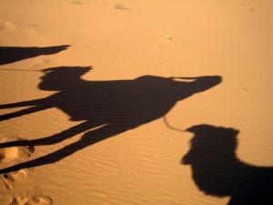 sence v puscavi 300x225 - Dežela, kjer zahaja sonce (Maroko)