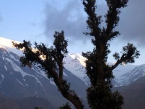 vrhovi na dlani 300x225 - Dežela, kjer zahaja sonce (Maroko)