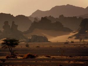 Puščavska pravljica