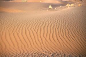 Doživeti puščavo