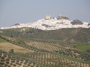 Spanija_Vodniska_trojka _v_Andaluziji