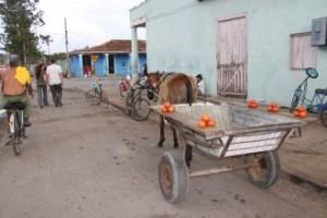 Kubanski utrinek