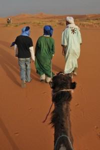 Maroko - na kameljih grbah