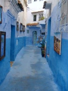 modra ulica