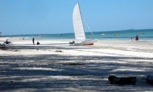 Hakuna matata- Zanzibar