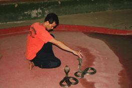Tajska_13 Feb. 01 08.51