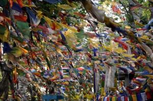 Iindija-Ladakh-molilne zastavice