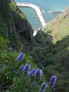 04-Madeira