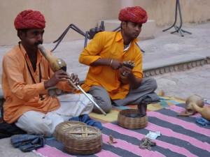 Indija-krotilci kac