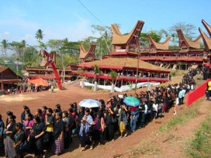 Tana Toraja 2 300x225 - Kdo živi v Tana Toraji?