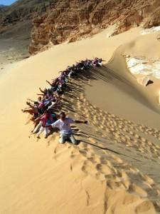 Sinajski puščavski peskovnik