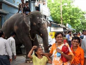 Nasmejani po prejemu slonovega blagoslova