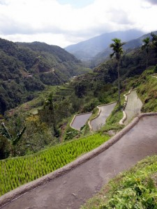 Riževa polja na Filipinih