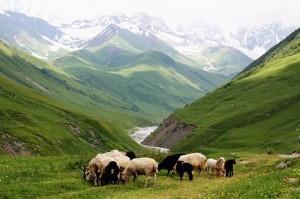 Gruzija-Svaneti