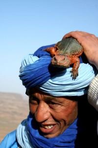 Maročan z kuščarjem