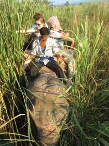 Slonji safari v nacionalnem parku Citvan - Nepal