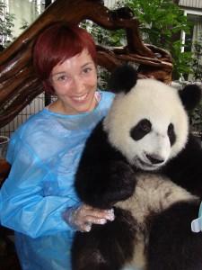 Kitajska pande