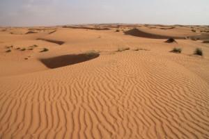 OMAN-Čudovita puščava Wahiba-Marijana Panić