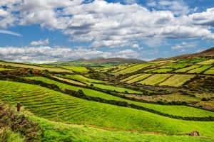 Irska-Dingle