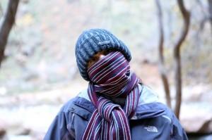 Zion - Novembrska jutra so še hladna