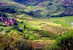Madagaskar-Narodna cesta 7
