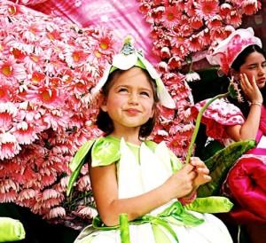 Funschal-festival cvetja