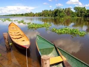 Venezuela-delta Orinoco