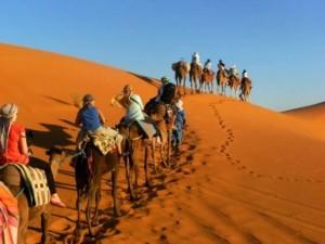 Maroko-jahanje kamel