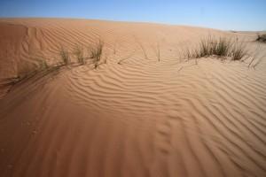 Oman - magična puščava Wahiba