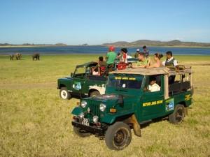 Šrilanka-Yala nacional park safari