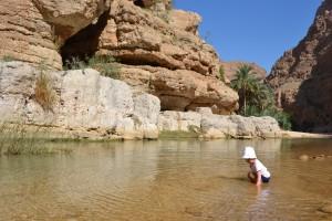 Dolina Shuab