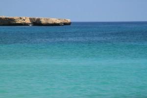 Turkizno arabsko morje