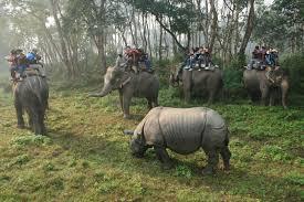 Nepal-Chitwan-slonji safari